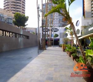 bingo plaza in benidorm